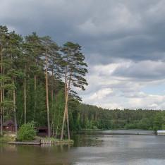 Озеро и сосны, поселок Елочка