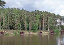 Озеро близ поселка КП Елочка